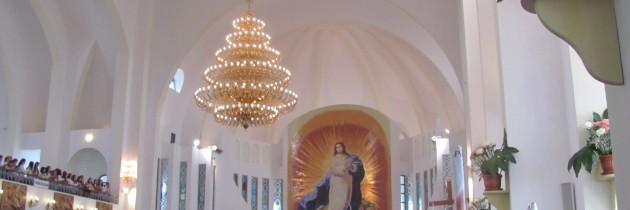 Ziua Tineretului 2013 – Înregistrarea video a sfintei Liturghii