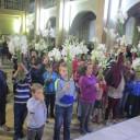 Binecuvântarea copiilor și a crinilor